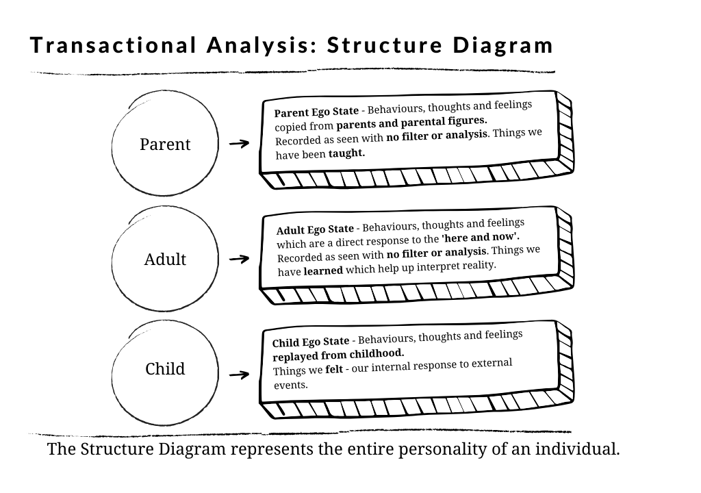 A Structure Diagram in Transactional Analysis
