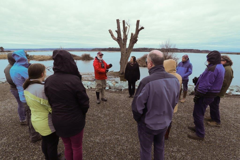Photo of the tour group taking in the transformation at high tide on Leque Island. Photo credit: Dawn Pucci