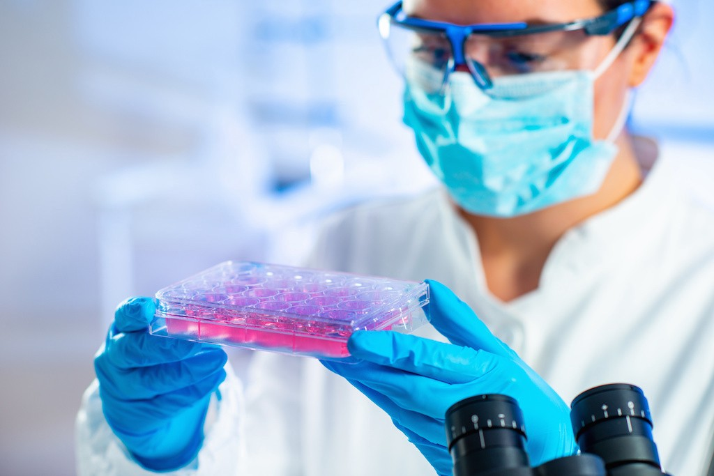 stem cell research autism