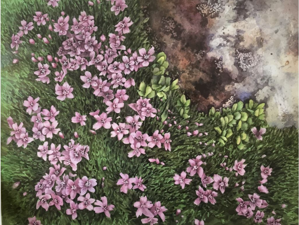 water color painting looking down at pink flowers