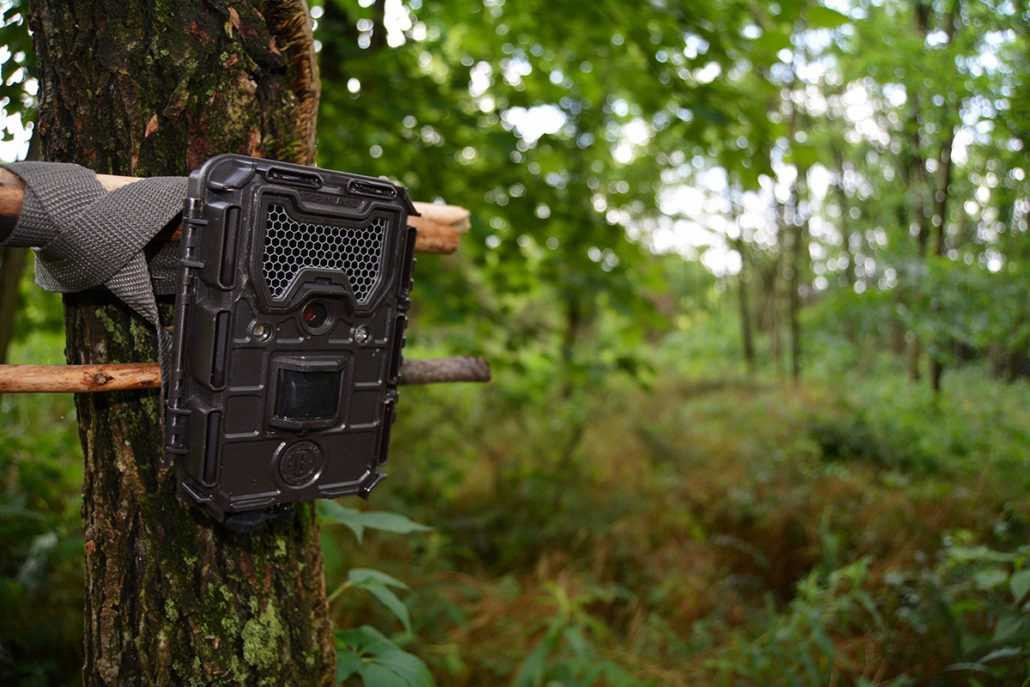 trail camera security