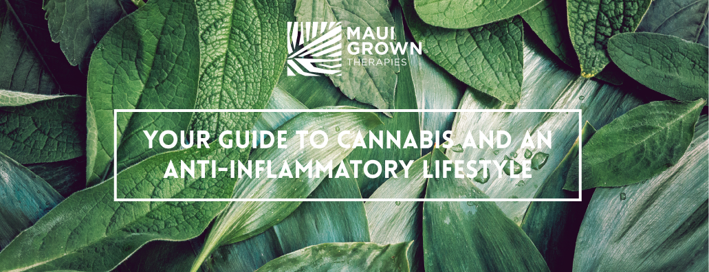 Your Guide to Cannabis and an Anti-Inflammatory Lifestyle