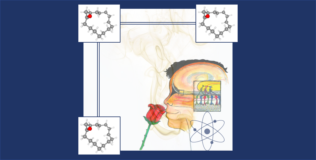 To what extent is your sense of smell powered by quantum physics?