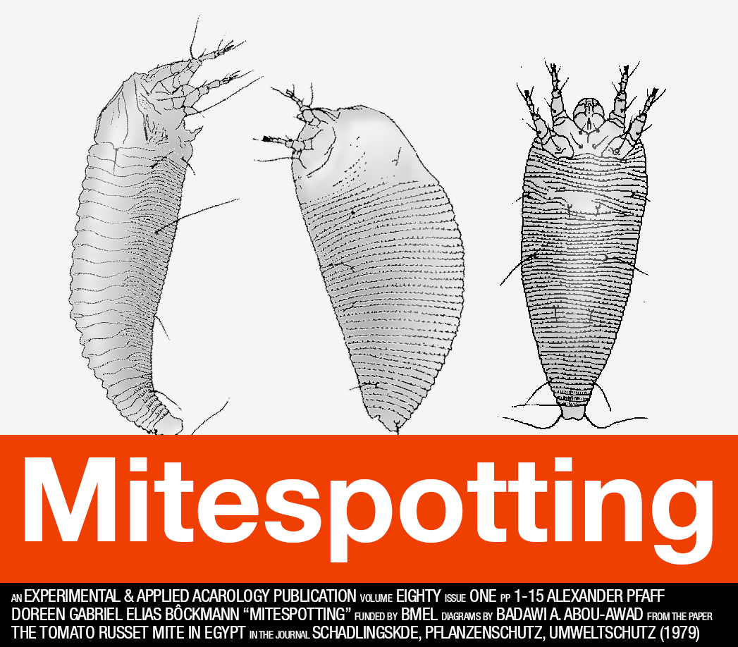 "A parody of the ""Trainspotting"" poster: ""Mitespotting""."