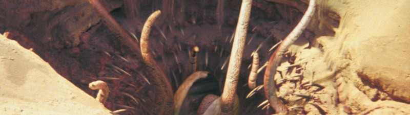 Is the Sarlacc Pit Possible? Three Real Sarlaccs (sort of