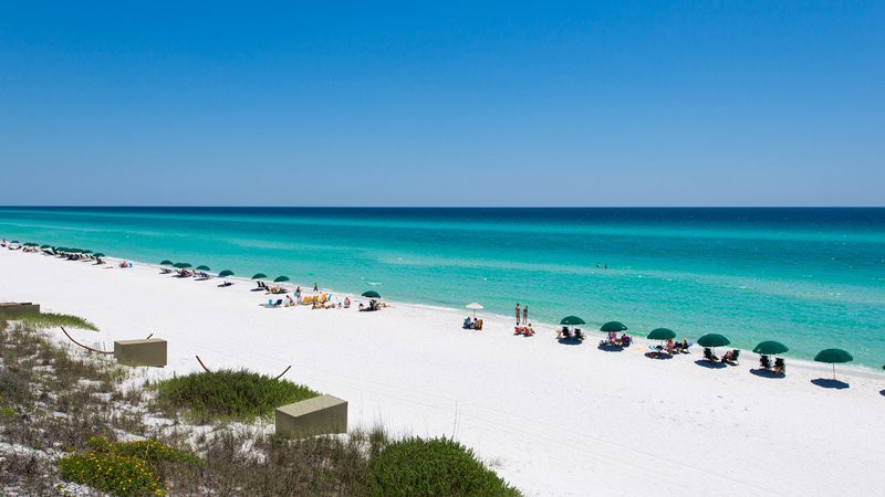 Paradise Beach Als On Scenic 30a