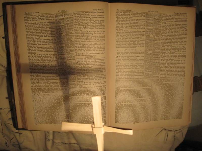 Types and Shadows in the Bible - John Bartels - Medium