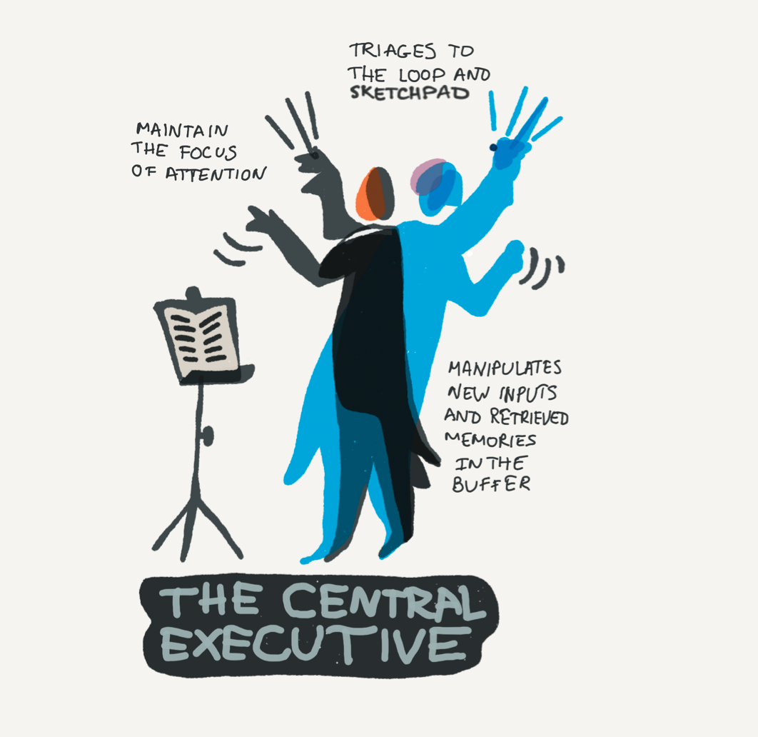 Illustration of the Central Executive focusing attention and triaging.