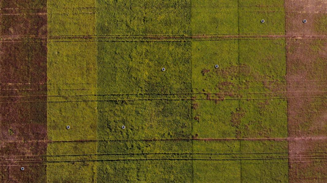 Aerial view of seven Arable Mark 2 devices in seed trial fields