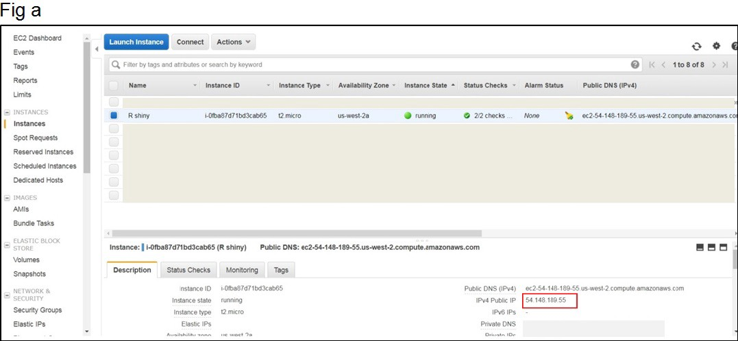 How to host an R Shiny App on AWS cloud in 7 simple steps