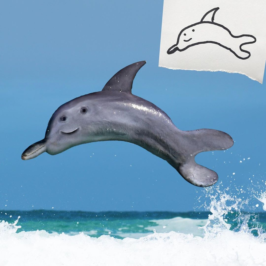 A child's drawing + Photoshop of a dolphin with rounded fins and a smiling face on one side of its head.