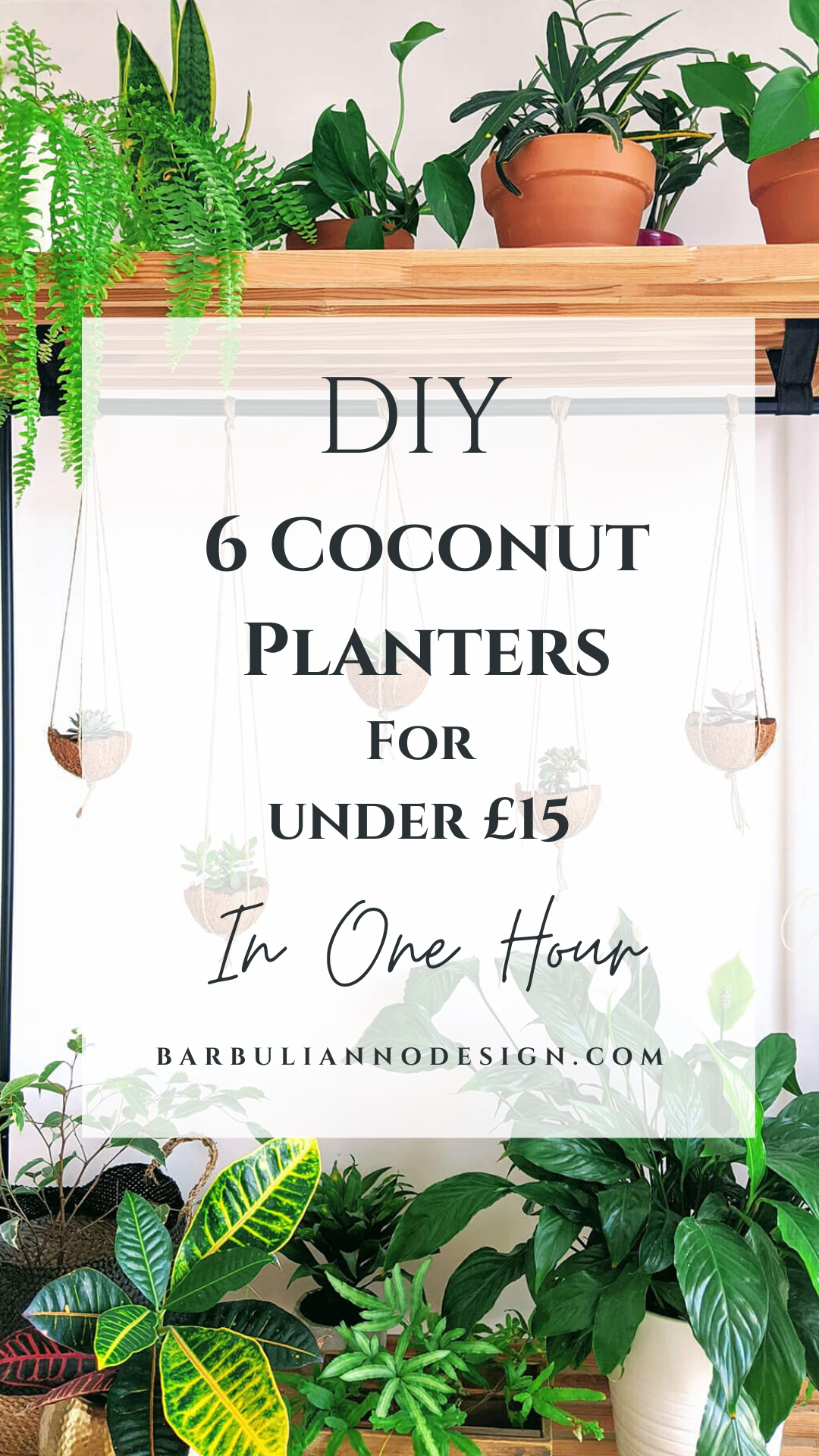 How to make a coconut shell plant hanger. Coconut shell plant hangers on a standing plant shelf filled with indoor plants.