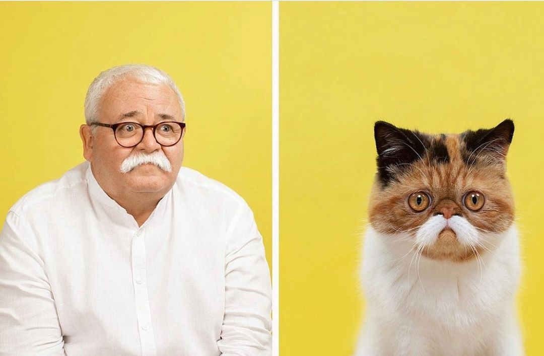 On the left, a man with white hair and mustache, on right, ca cat with a similar mustache-like white face marking