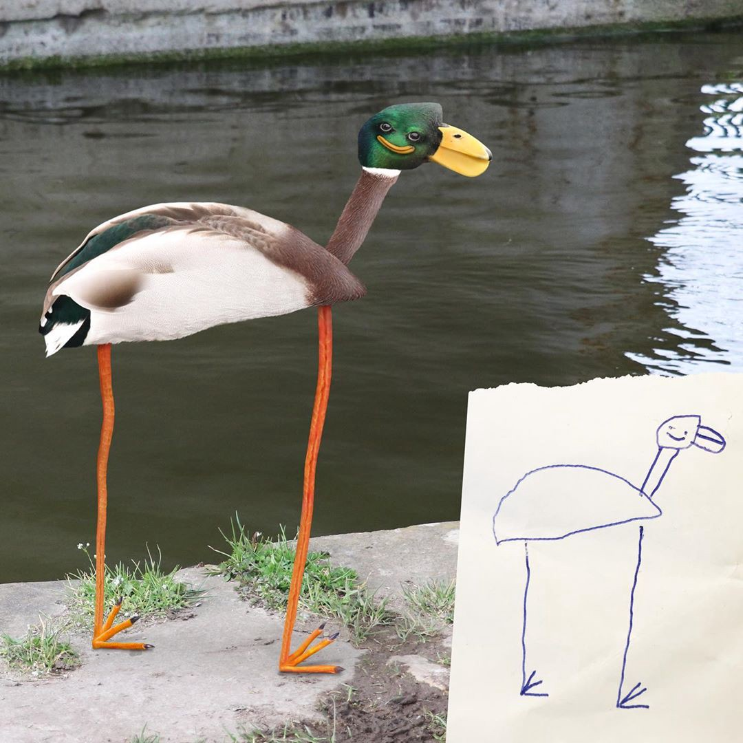 A child's drawing of a duck with long legs, creepy smile, & a serious thigh gap next to a Photoshopped version of the drawing