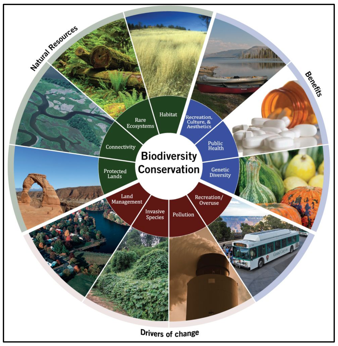 Biodiversity conservation entails several aspects, such as habitat management, public health, and invasive species.