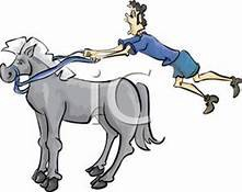 A funny image of a man unable to keep a hold of the reigns to his horse.