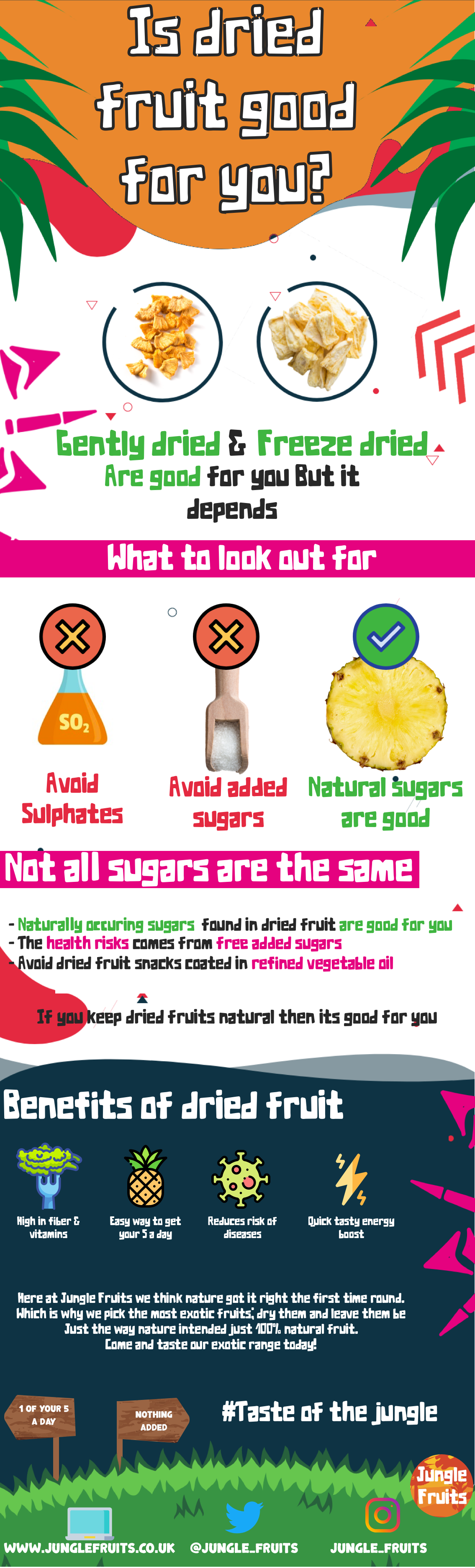 Dried fruit good or bad? infographic | Is dried fruit as healthy as fresh?| Jungle Fruits