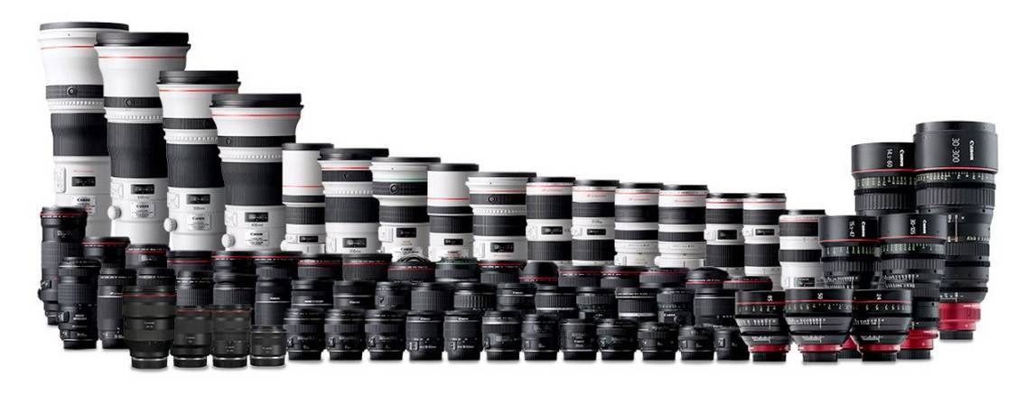 A wide range of Canon DSLR lenses, lined up.