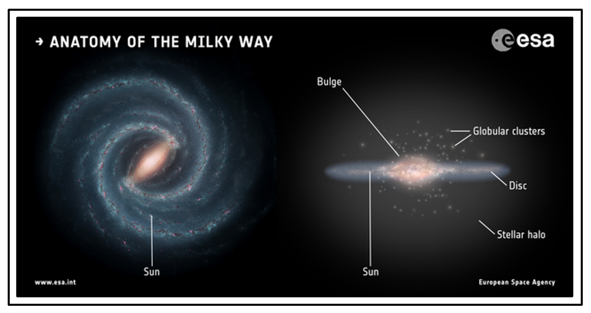 A schematic view exhibiting the Milky Way's main components.