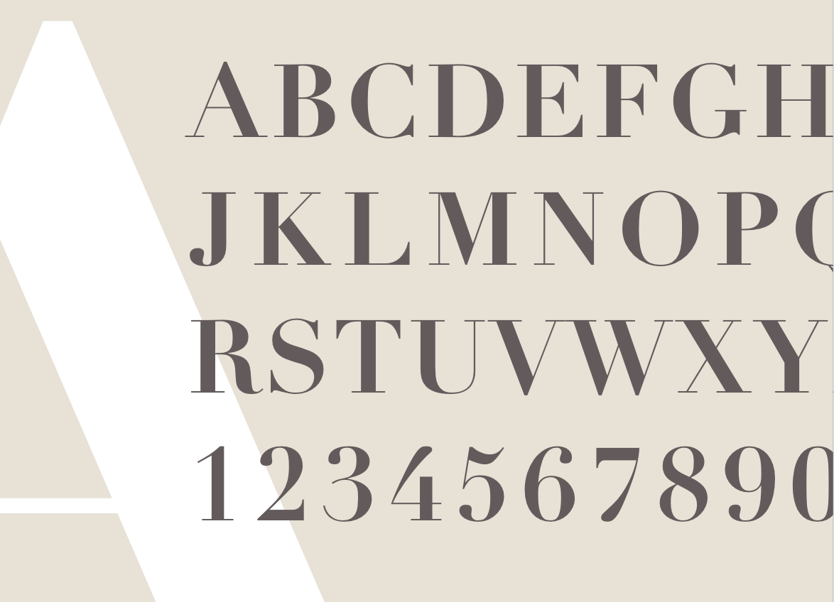 Didot: Type Specimen Project Process - Communication Design