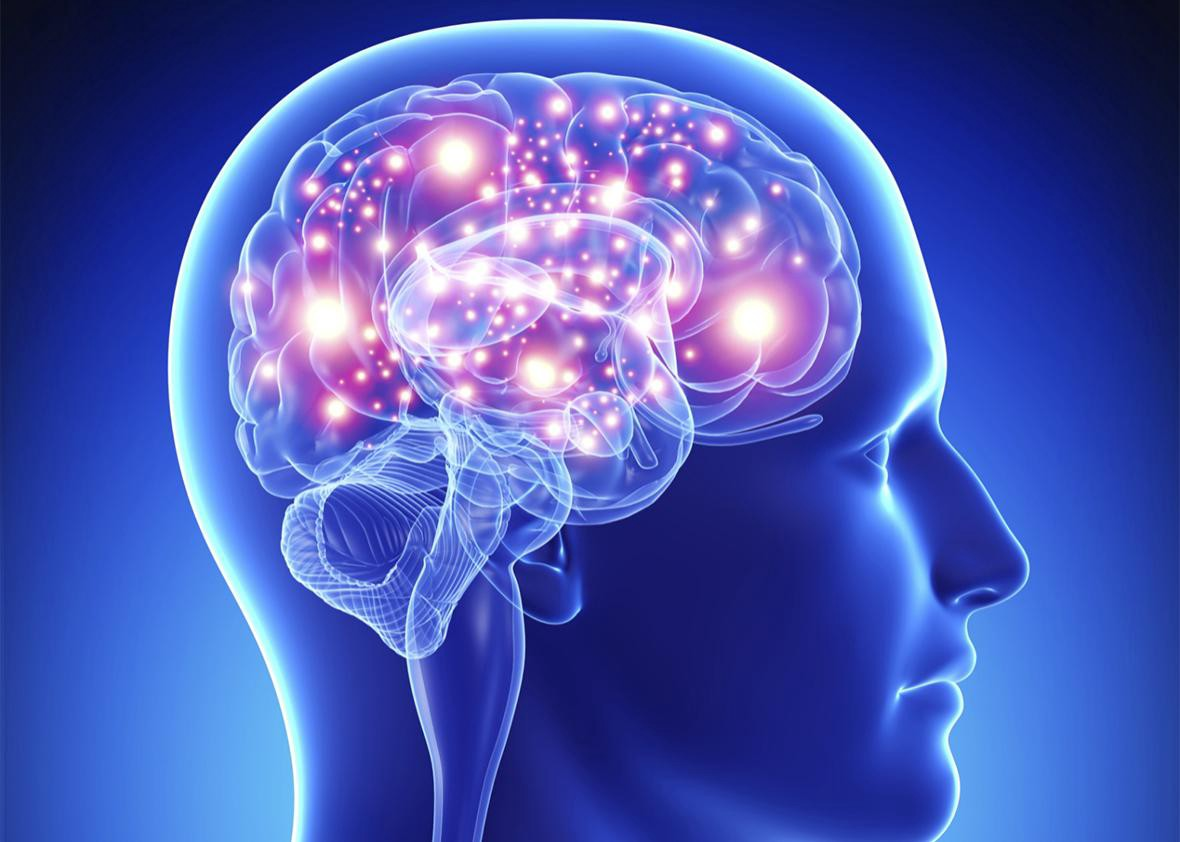 stylised graphic of a lit up human brain inside a translucent blue human head