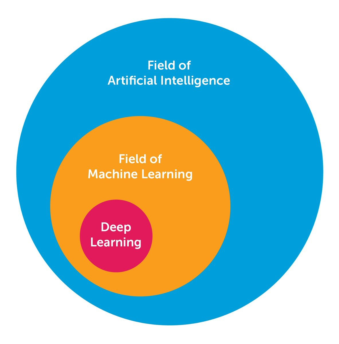 The 10 Deep Learning Methods AI Practitioners Need to Apply