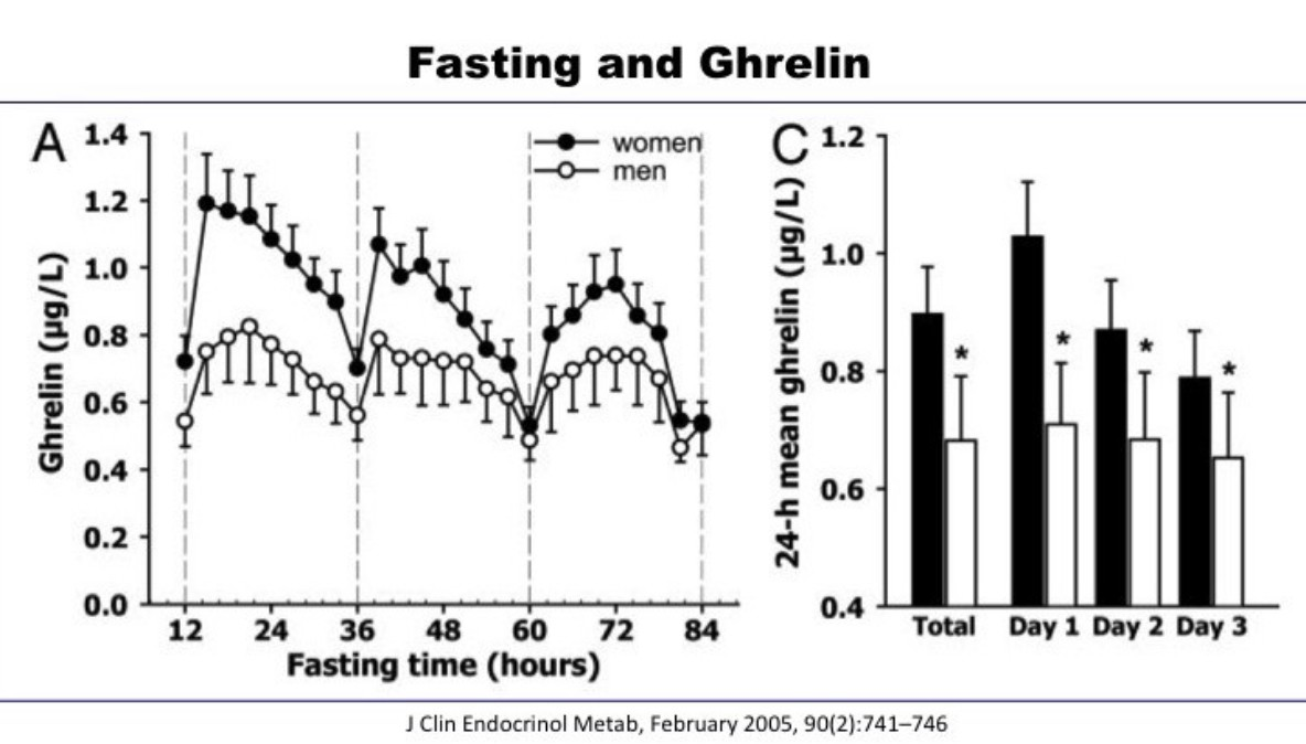 A graph from a study showing how the hunger hormone Ghrelin decreases as fasting goes on.