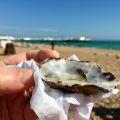 Today's oyster.