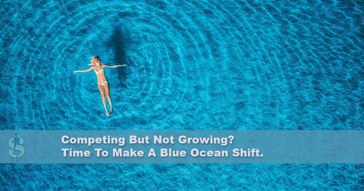 A Blue Ocean Strategy in The Scuba Diving Industry