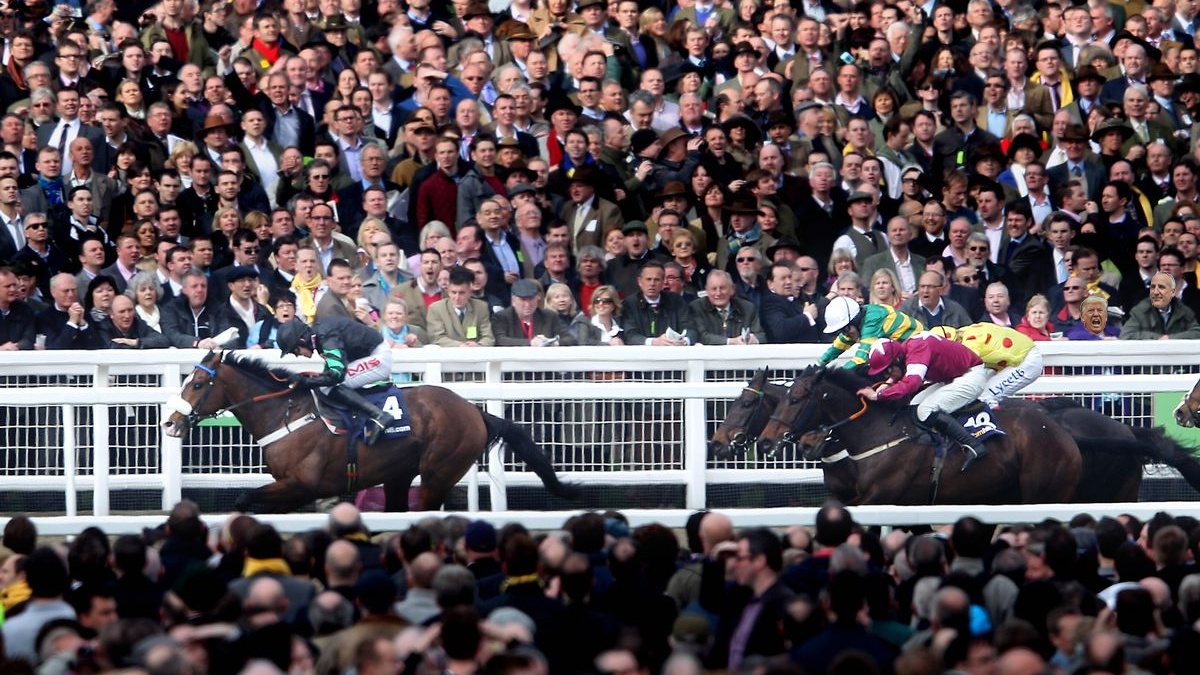 A large crowd of people watching the horse race at Cheltenham. Two of the faces have been replaced with our CPO and Donald Trump
