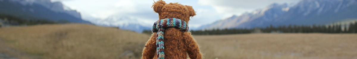 Teddy bear representing the Unexpected  section of the Tomorrow Times, a monthly news digest on systemic sustainability