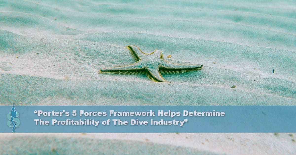 Porter's Five Forces Analysis of The Scuba Diving Industry