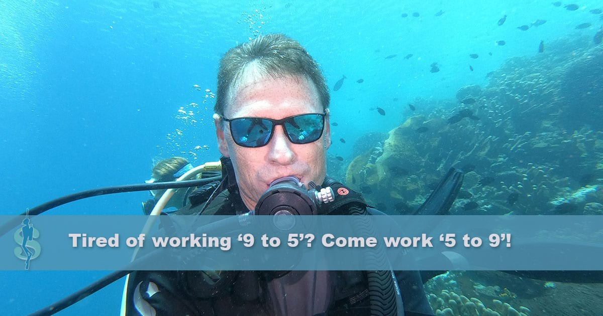 Profile of a Scuba Diving Professional
