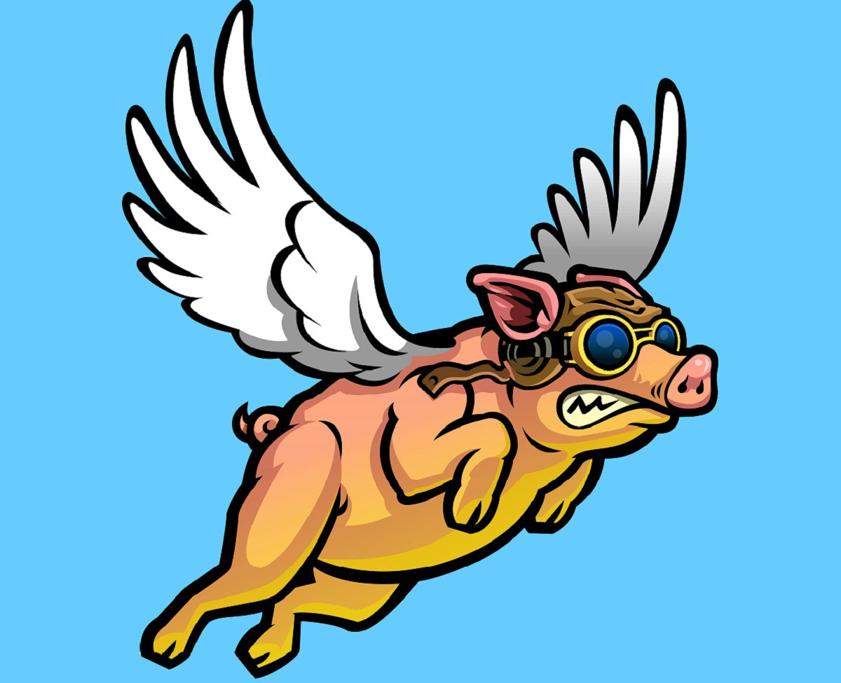 A flying pig.