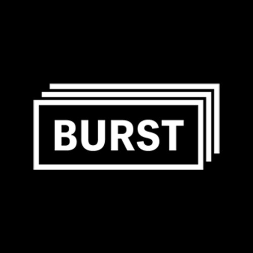 Image result for 4. Burst Shopify logo