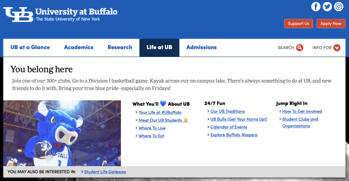 Always Room for Improvement: UB's Website Case Study and
