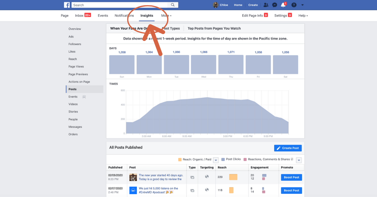 Screenshot of Facebook Business Page Insights