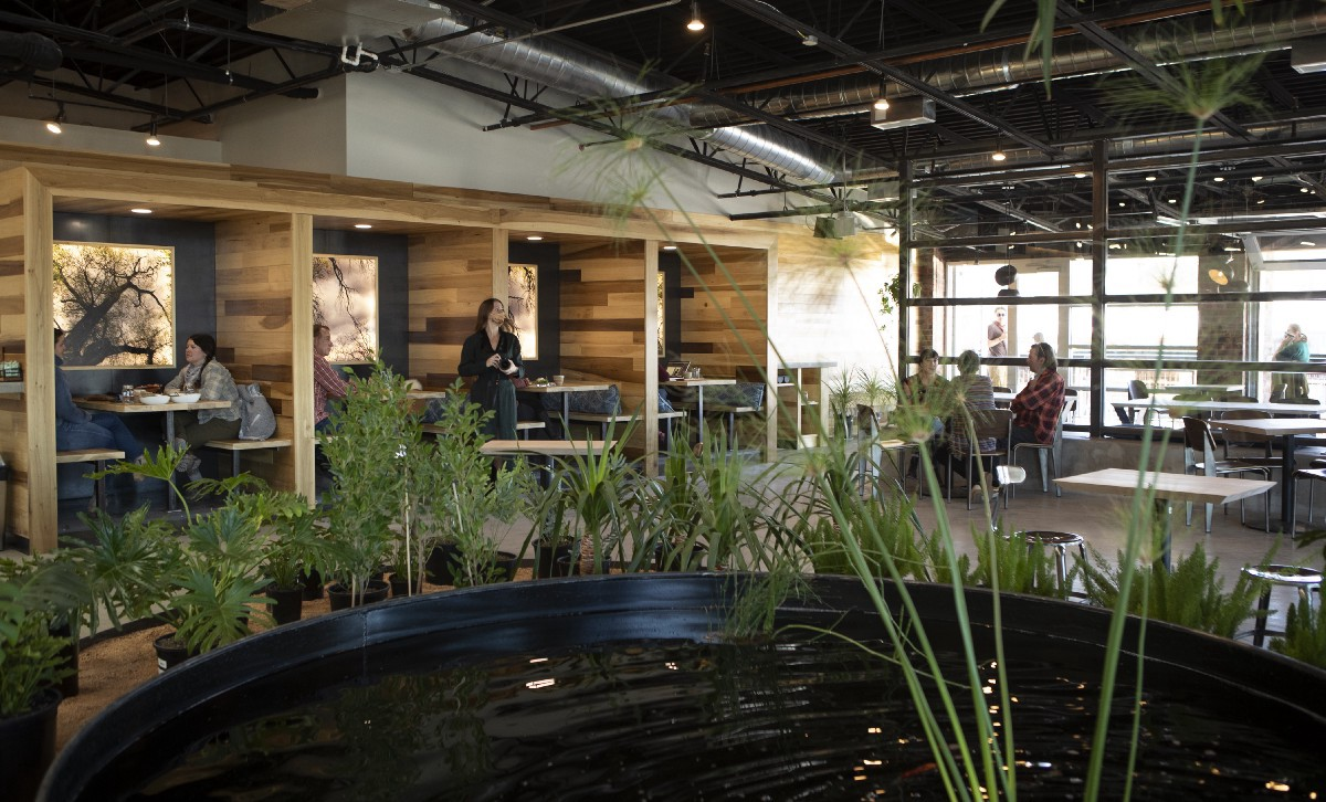 Opuntia Café's big room and wide windows. The koi pond is in the forefront and the wooden booths are behind that.