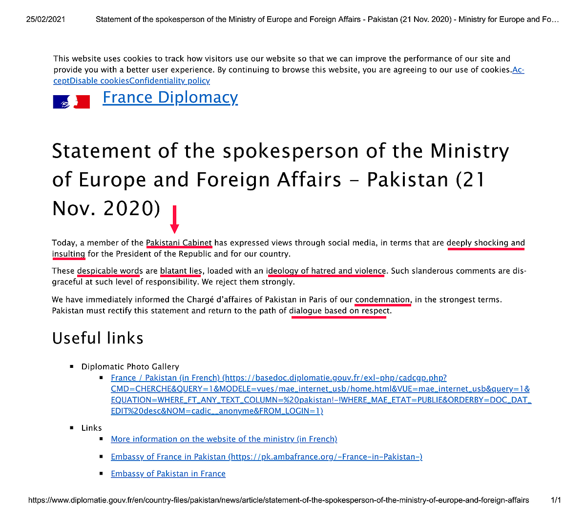 Shireen Mazari, Pakistan, France Insulting , deeply shocking, blatant lies, disgraceful, ideology of hatred and violence.