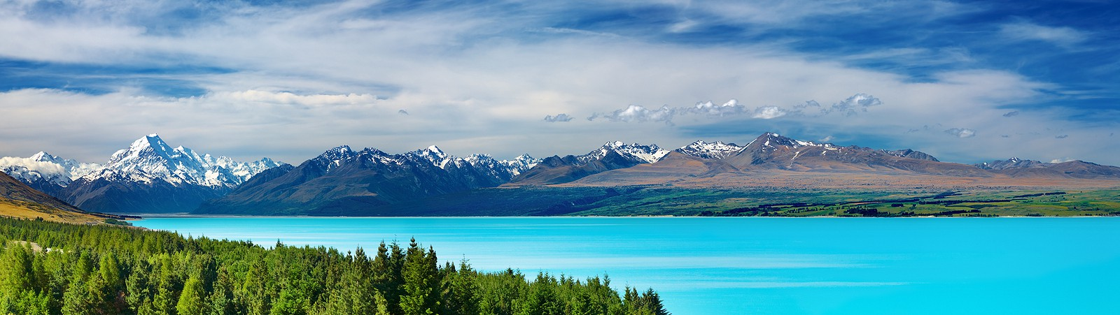 Landscape of Aoraki Mt Cook and ranges in the distance, bright ice blue Pukaki Lake in centre and pine trees in foreground.
