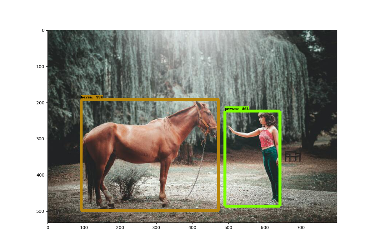 woman reaching out to pat a horse on the nose, with colored rectangles drawn around the woman and the horse