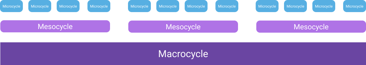 The basic building blocks of periodized programs: Microcycles, mesocycles, macrocycles