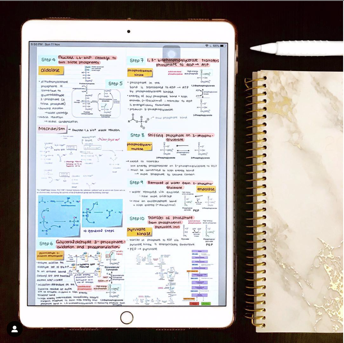 How to create good-looking notes on the iPad - GoodNotes Blog