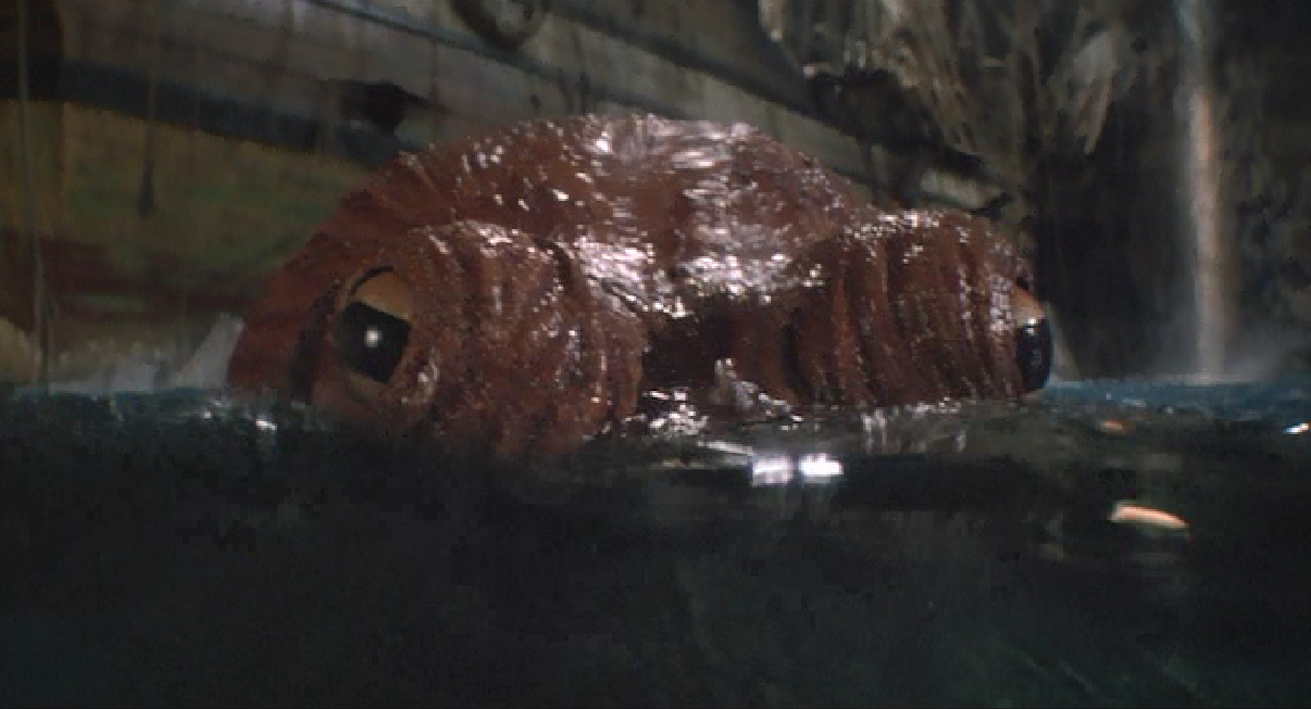 The Goonies' Octopus rises its eyes aboe the water.