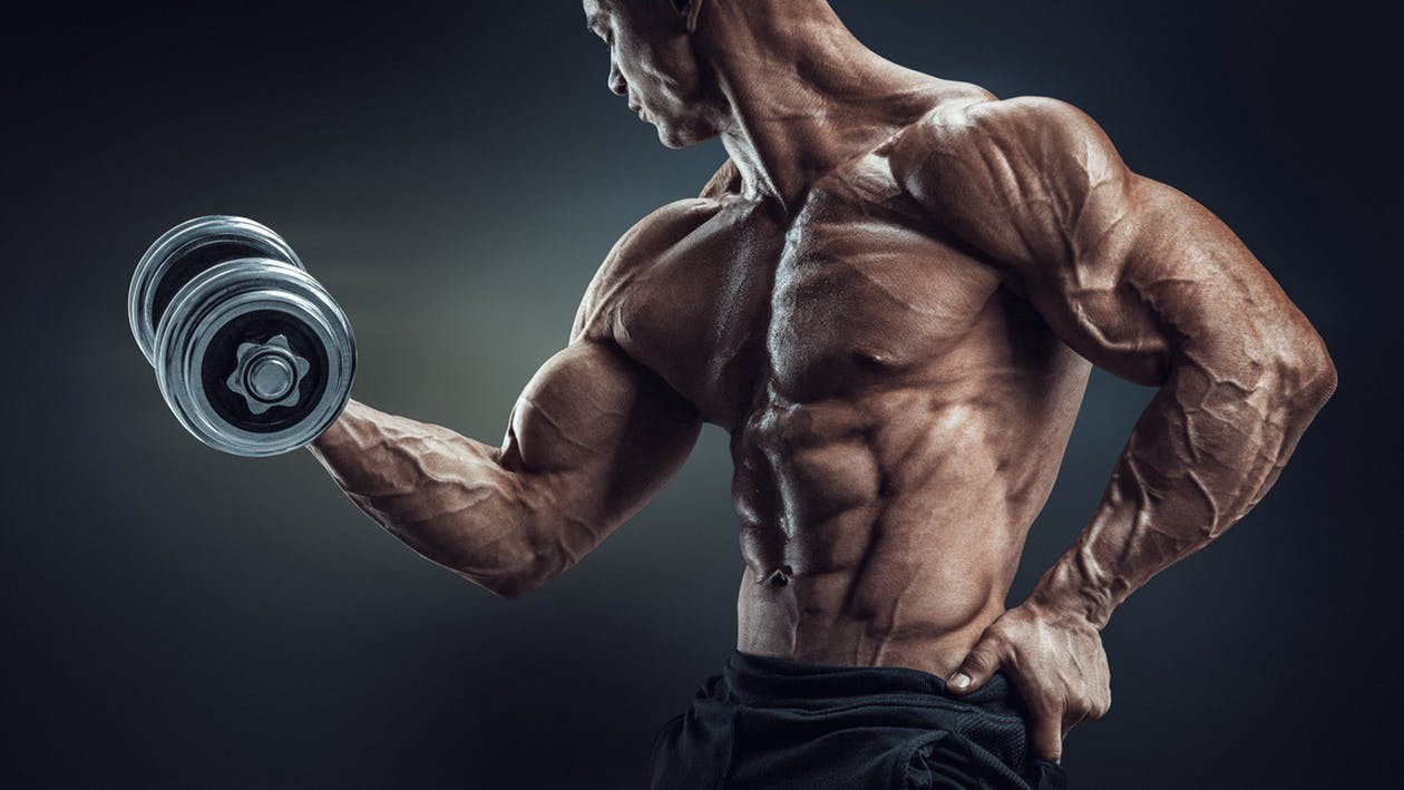 10 Muscle-Building And Fat-Burning Workout Plan To Build