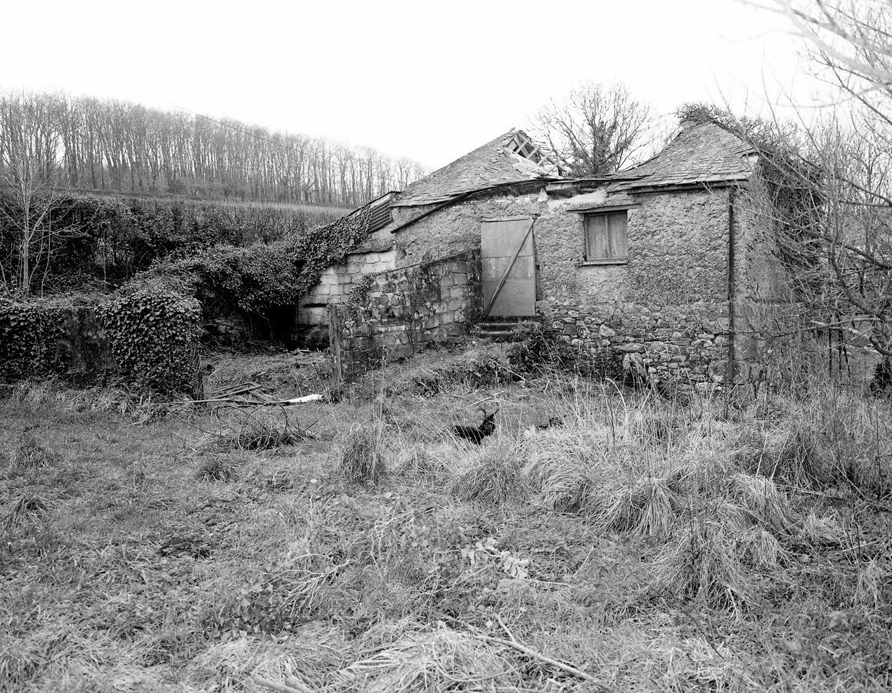 Black and white photo of a barn