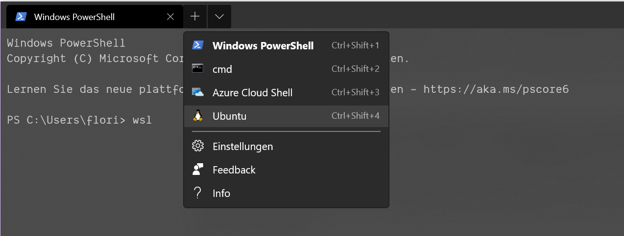 Screenshot showing how to enter the Windows Subsystem for Linux