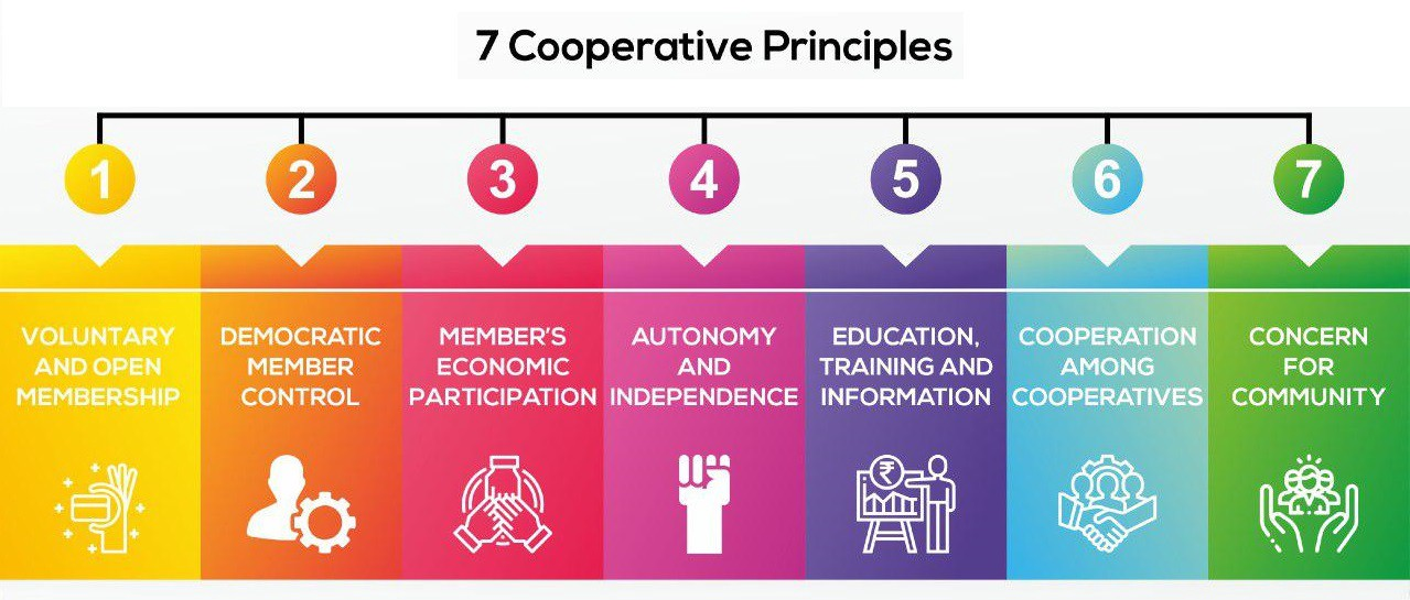 What is a Cooperative? Here's A Simple Plain English ...