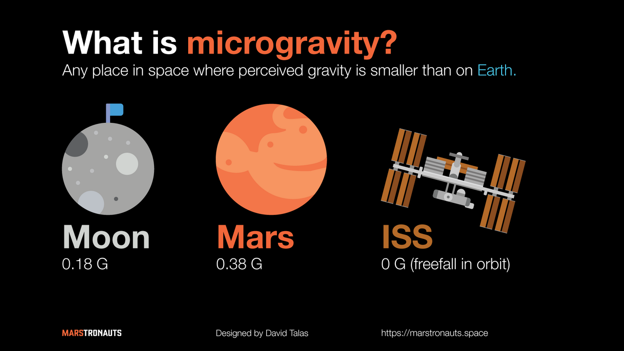 Introduction to the Effects of Microgravity on the Human Body | by David  Talas | Marstronauts | Medium